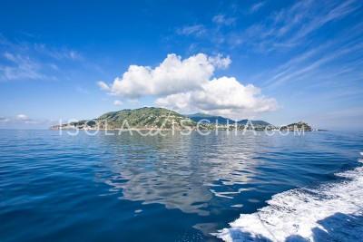 L'isola d'Ischia vista dal mare