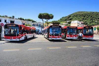 Orari Autobus Ischia