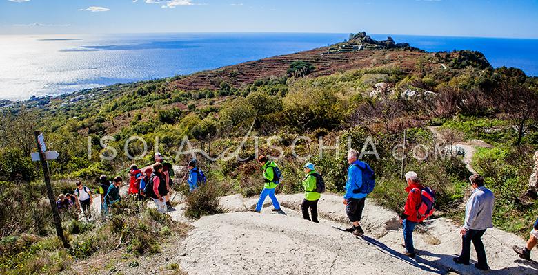 Trekking sul Monte Epomeo
